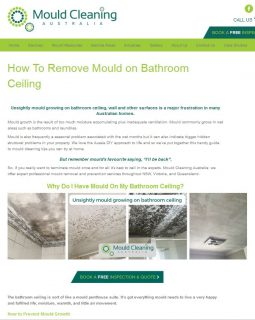 Mould bathroom ceiling